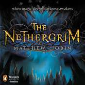The Nethergrim Audiobook, by Matthew Jobin