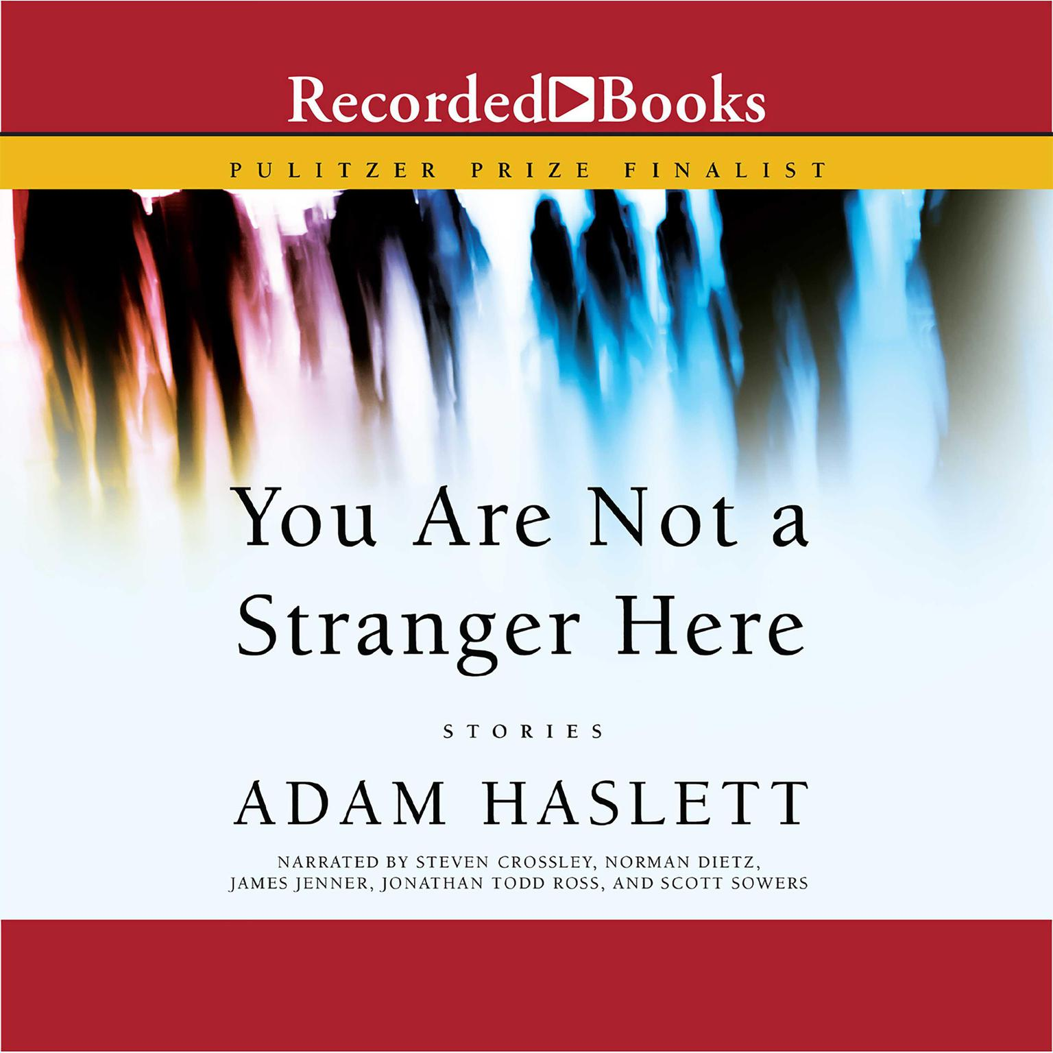 Printable You Are Not a Stranger Here Audiobook Cover Art