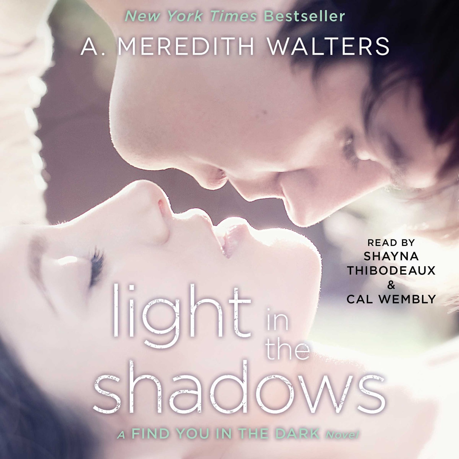 Printable Light in the Shadows Audiobook Cover Art