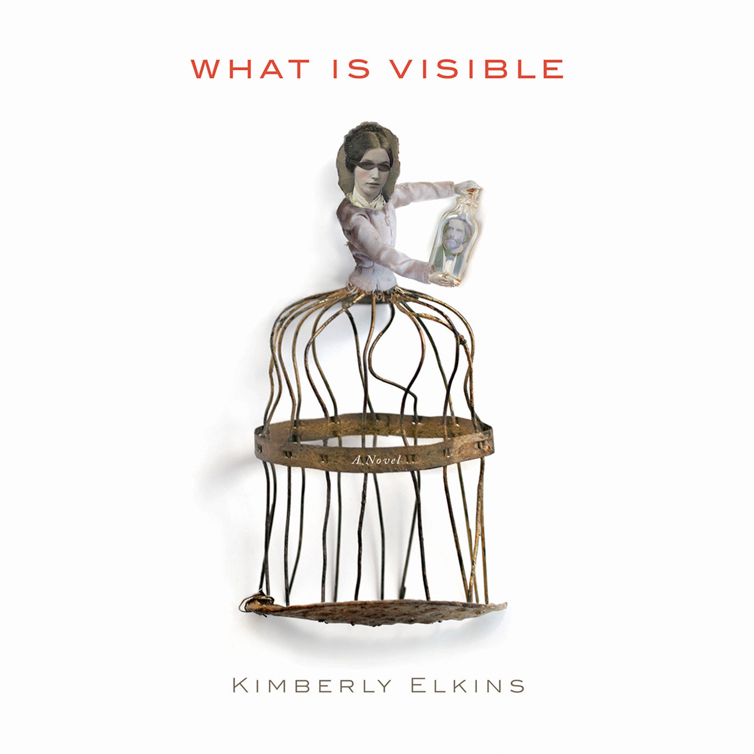 Printable What Is Visible: A Novel Audiobook Cover Art