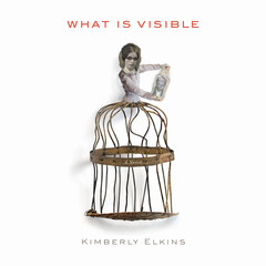 What Is Visible: A Novel Audiobook, by Kimberly Elkins
