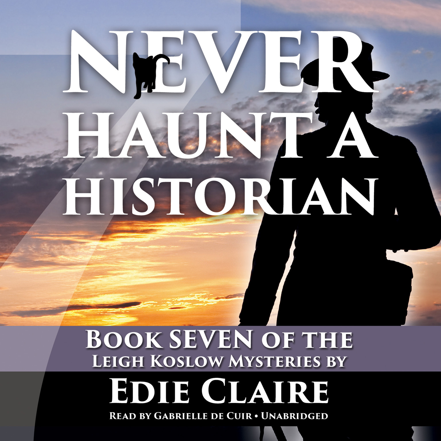 Printable Never Haunt a Historian Audiobook Cover Art