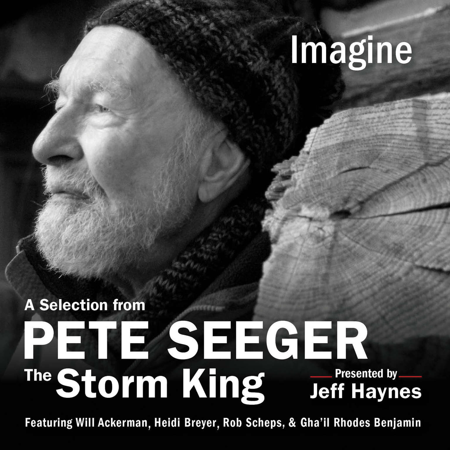 Printable Imagine: A Selection from Pete Seeger: The Storm King Audiobook Cover Art