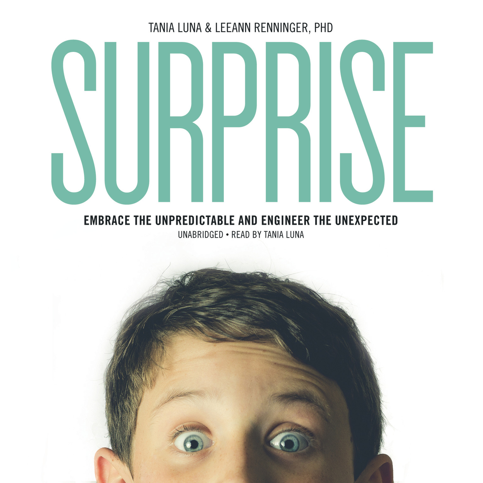 Printable Surprise: Embrace the Unpredictable and Engineer the Unexpected Audiobook Cover Art