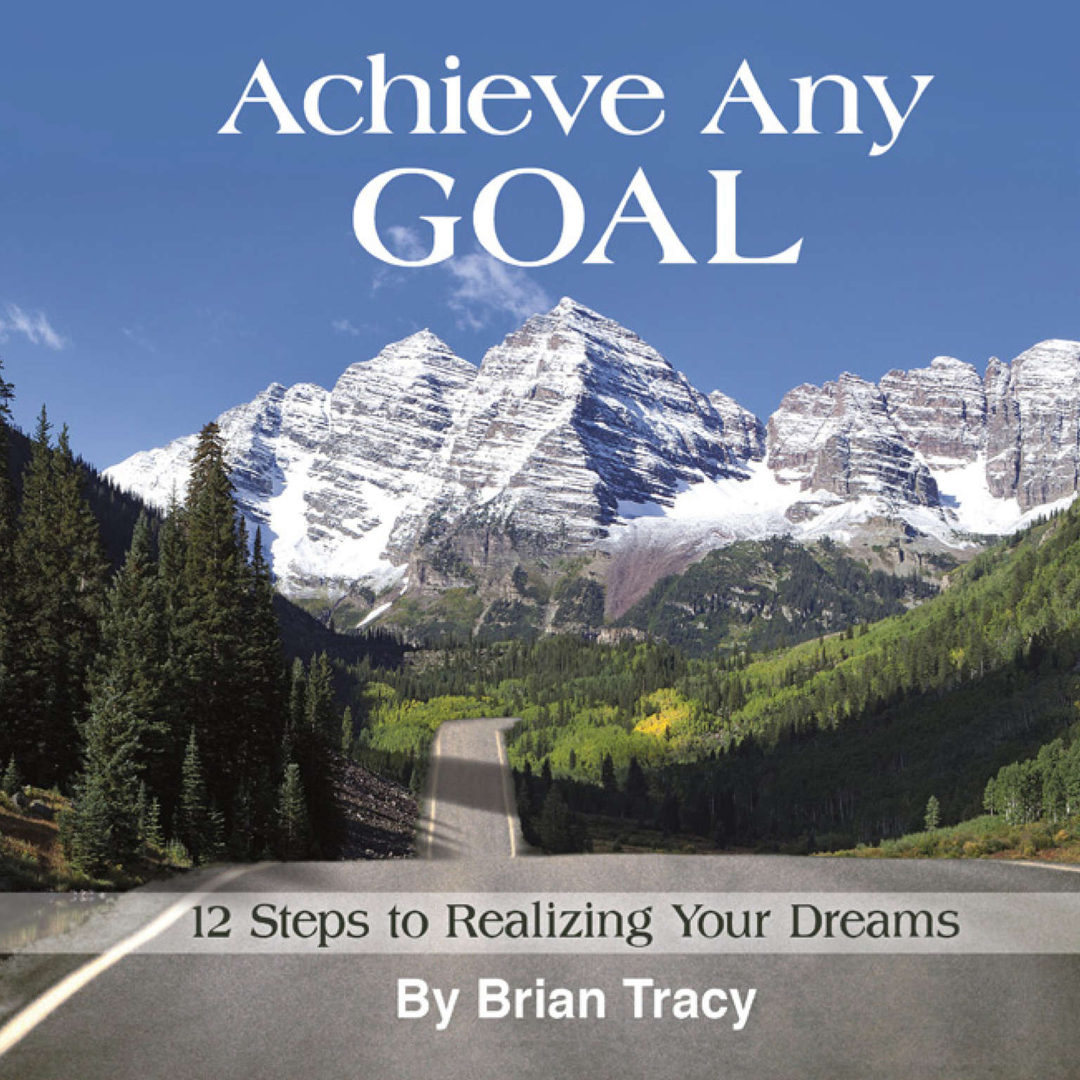 Printable Achieve Any Goal: 12 Steps to Realizing Your Dreams Audiobook Cover Art