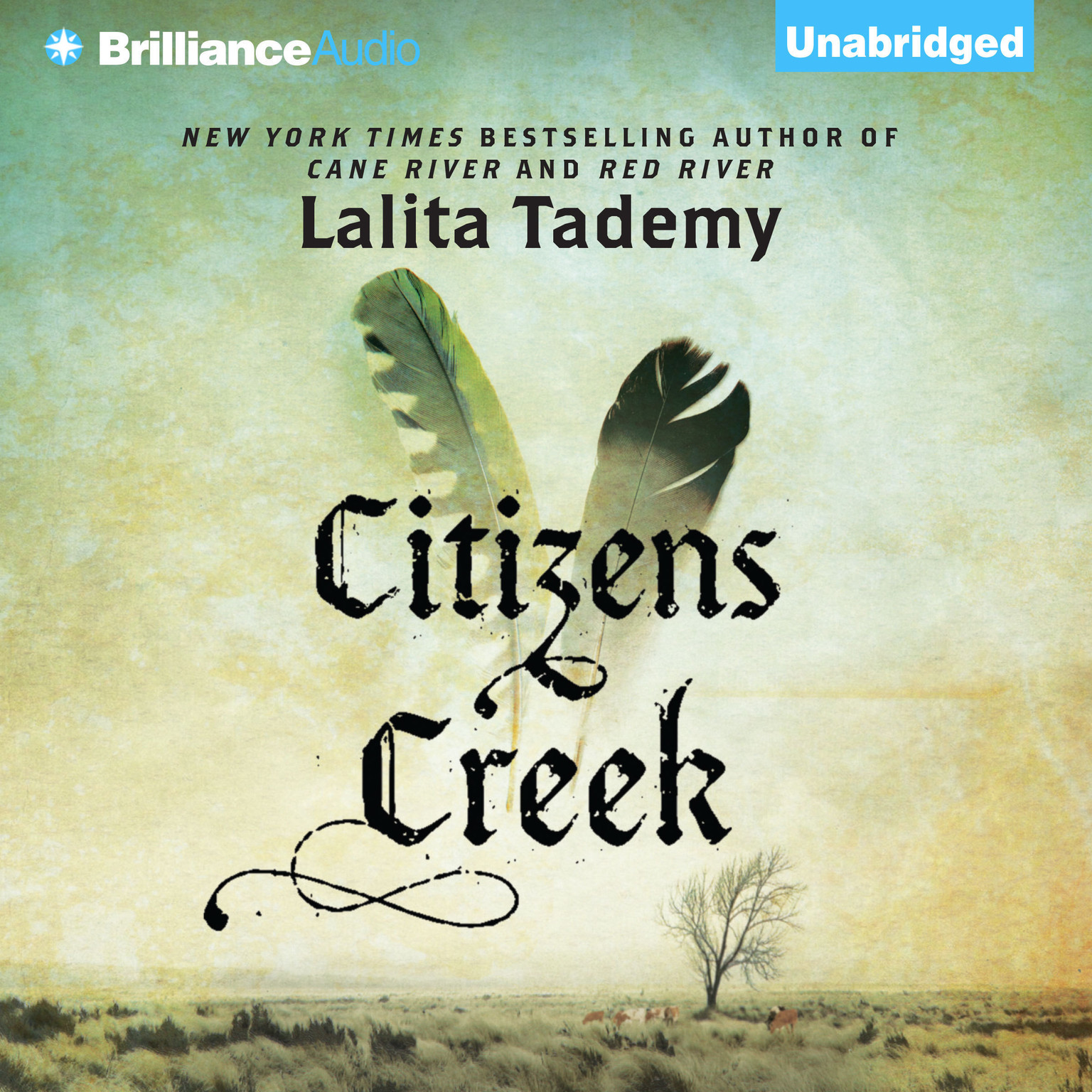 Printable Citizens Creek: A Novel Audiobook Cover Art