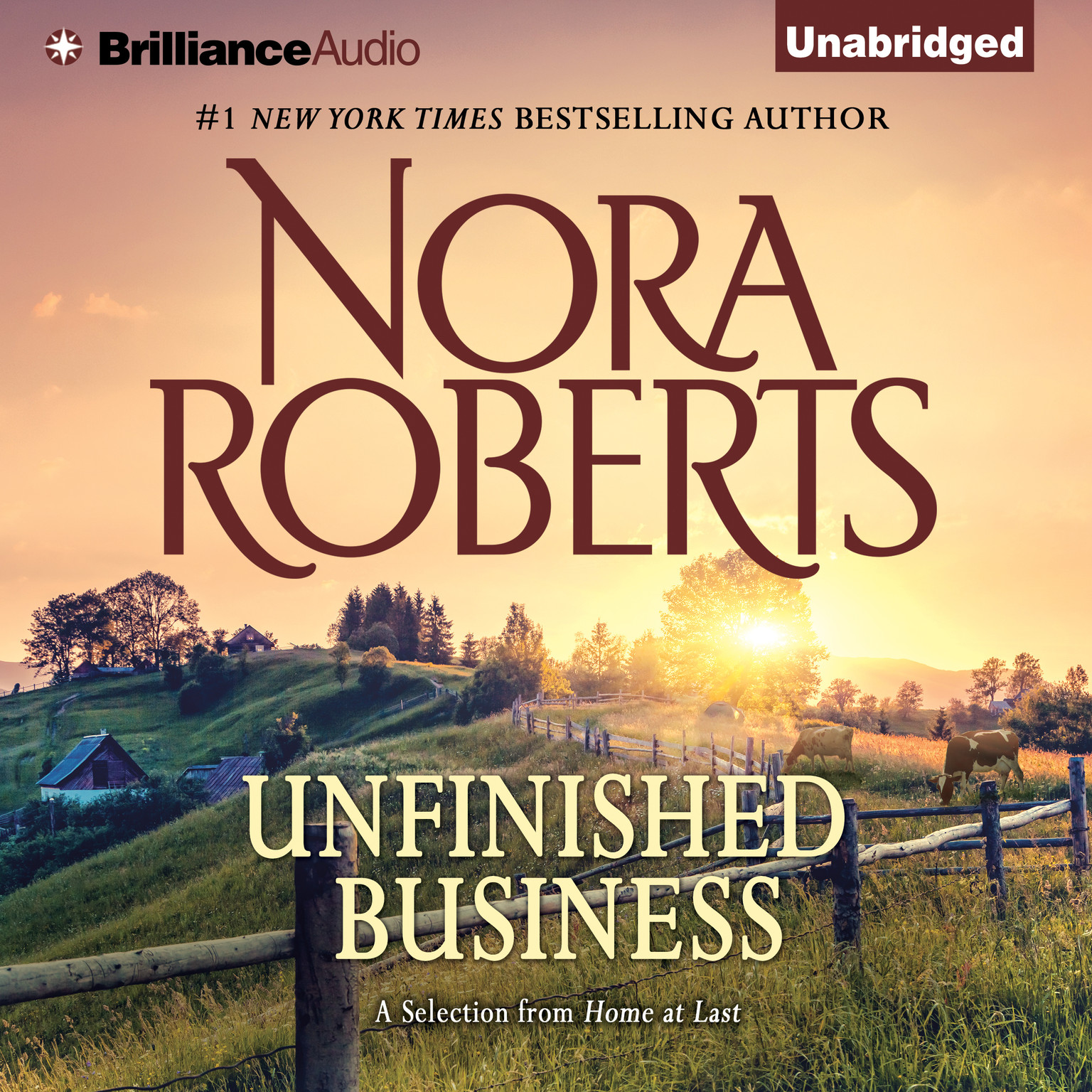 Printable Unfinished Business: A Selection from Home at Last Audiobook Cover Art