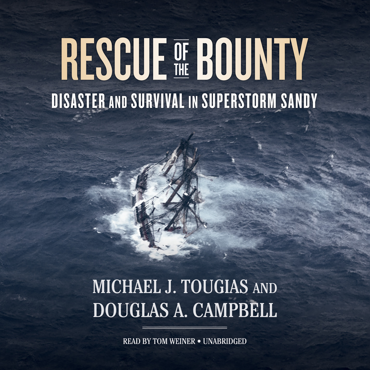 Printable Rescue of the Bounty: Disaster and Survival in Superstorm Sandy Audiobook Cover Art