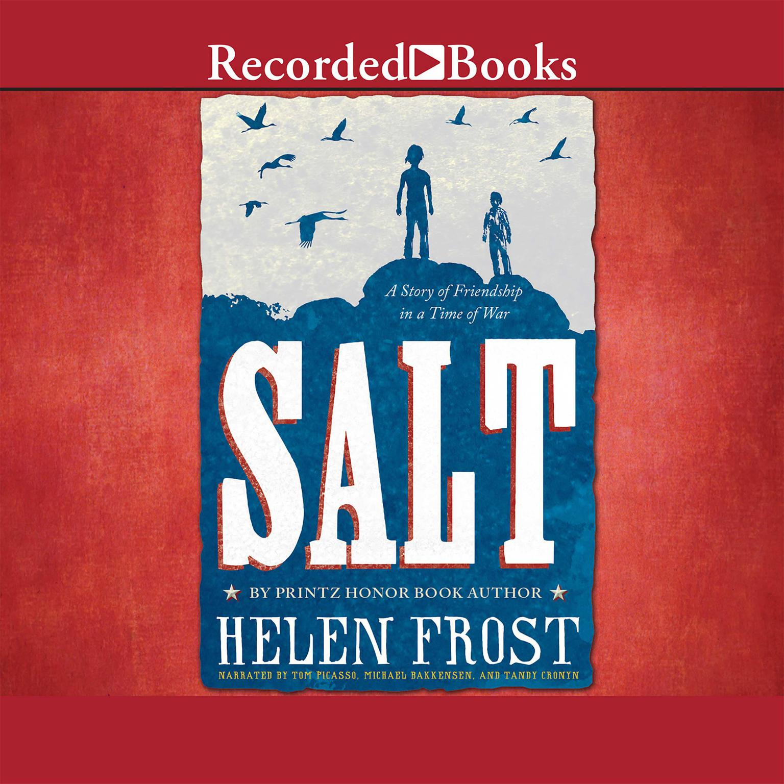 Printable Salt: A Story of Friendship in a Time of War Audiobook Cover Art