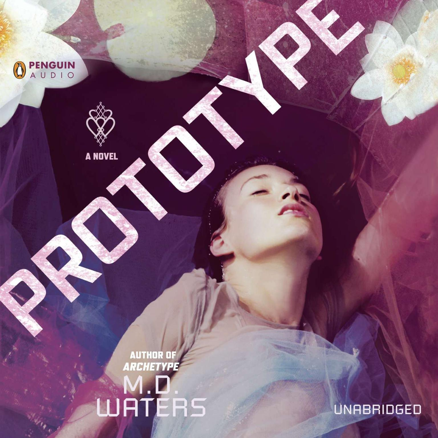 Printable Prototype: A Novel Audiobook Cover Art