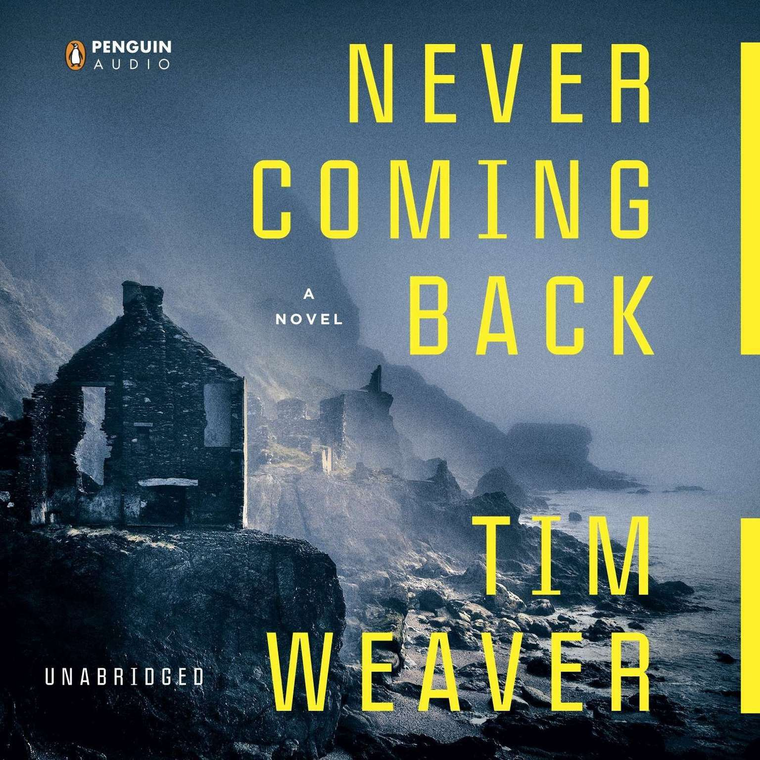 Printable Never Coming Back Audiobook Cover Art