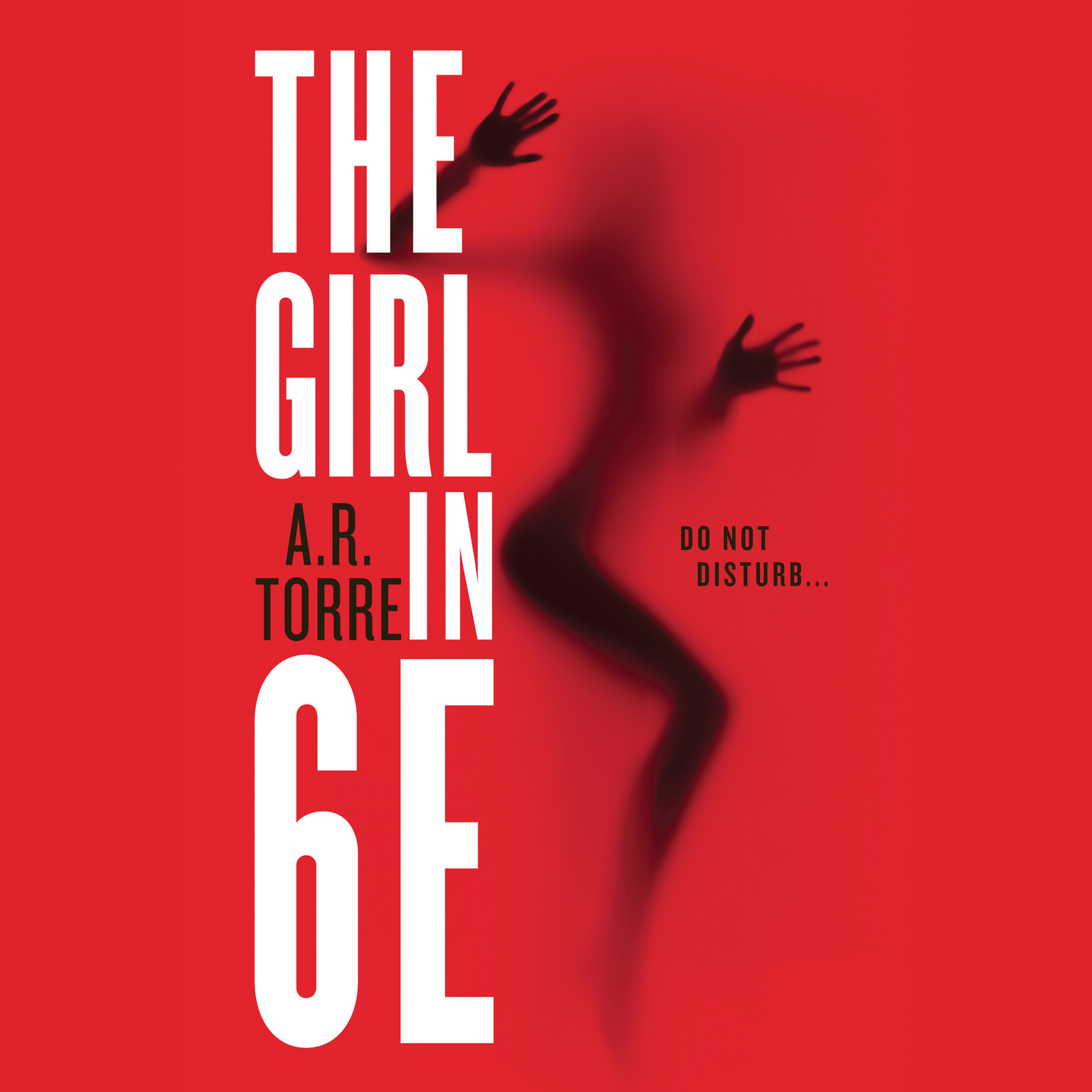 Printable The Girl in 6E Audiobook Cover Art