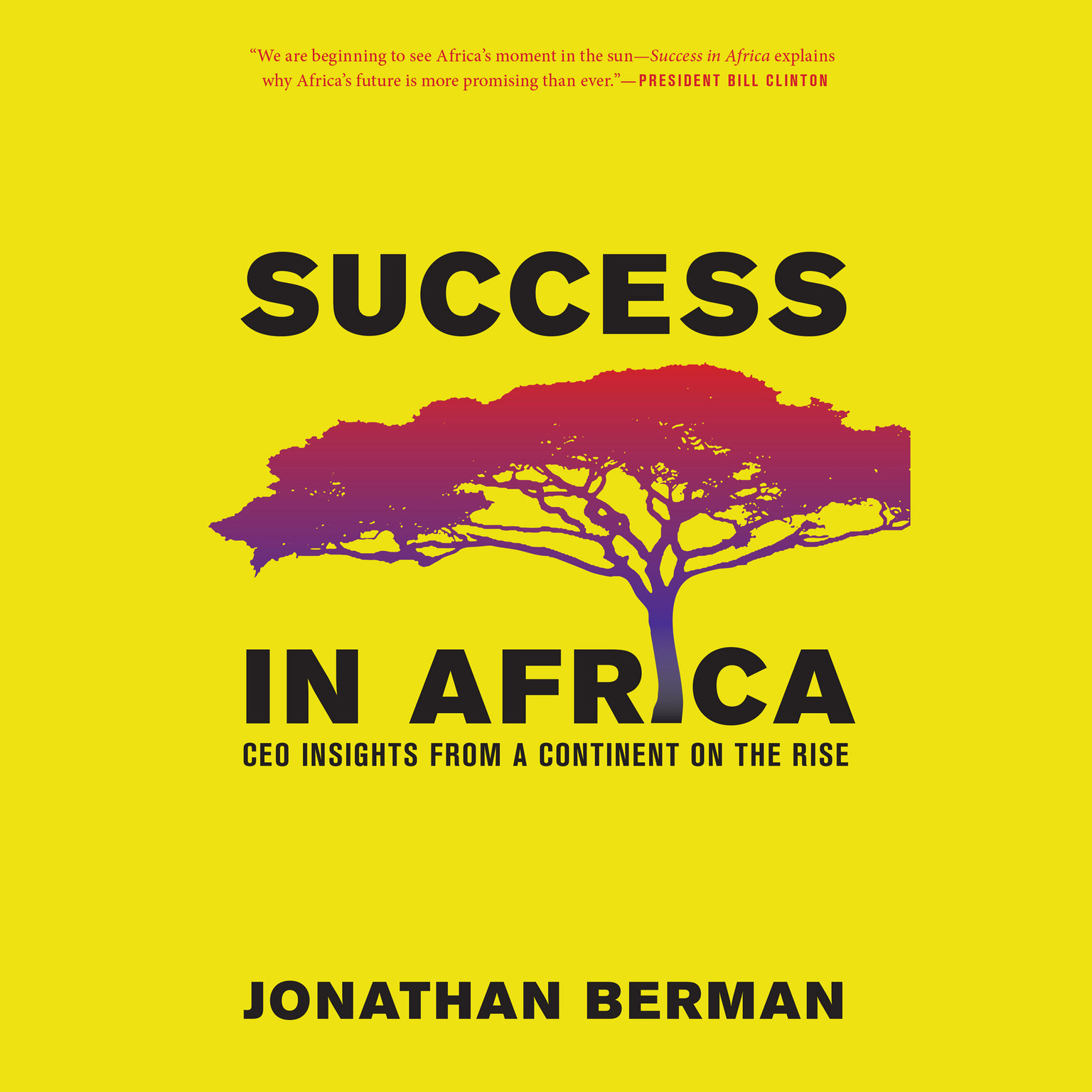 Printable Success in Africa: CEO Insights from a Continent on the Rise Audiobook Cover Art