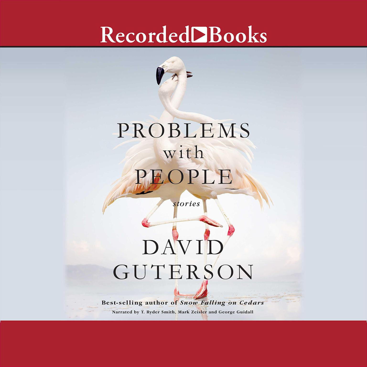 Printable Problems with People: Stories Audiobook Cover Art
