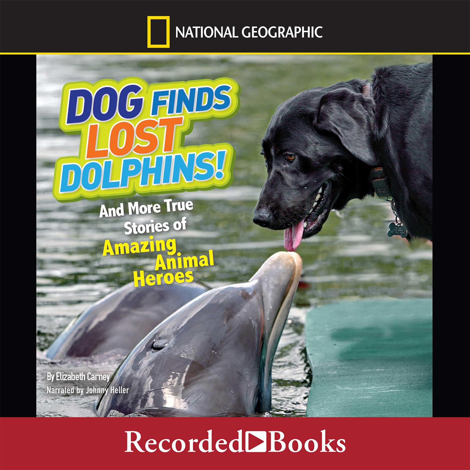 Printable Dog Finds Lost Dolphins: And More True Stories of Amazing Animal Heroes Audiobook Cover Art