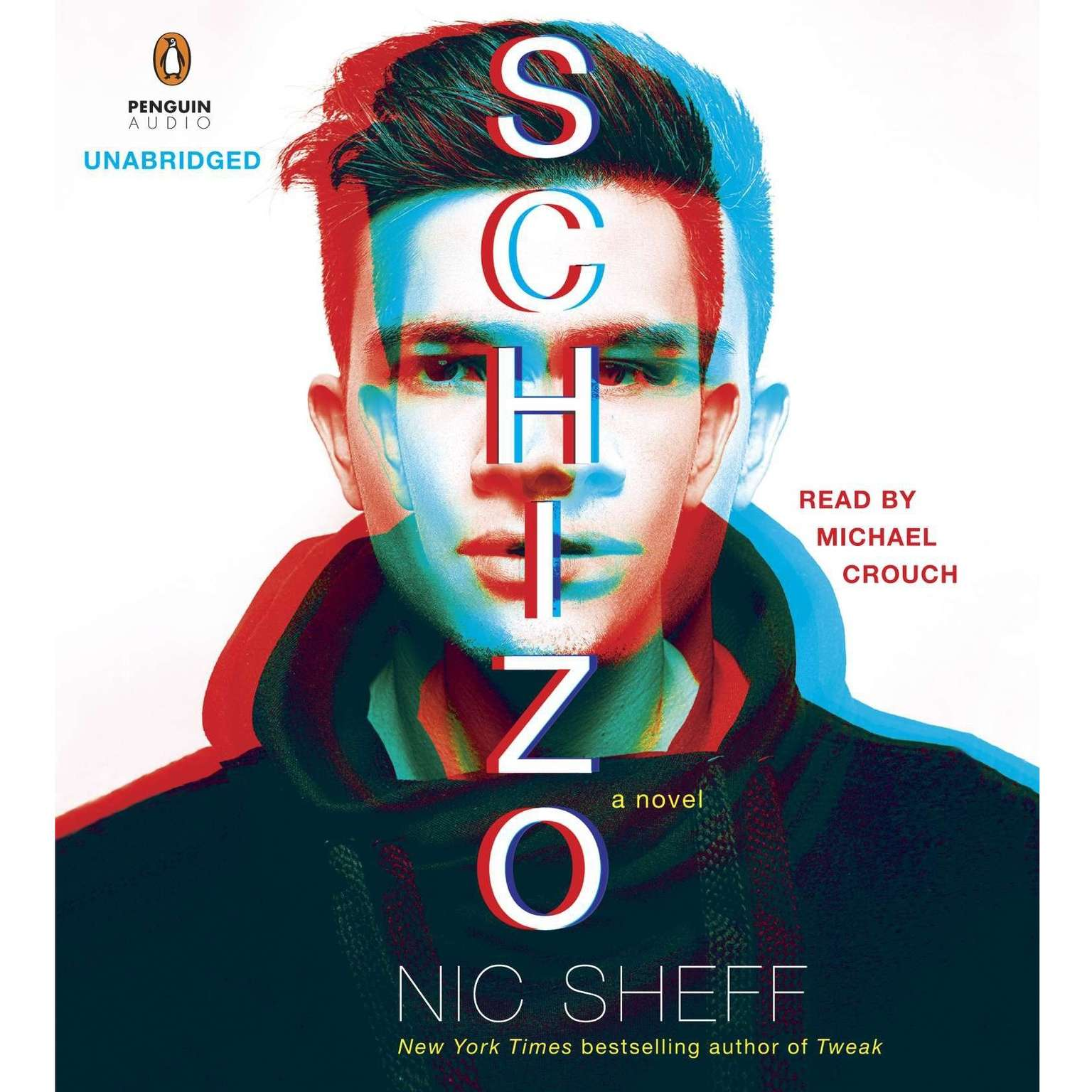 Printable Schizo: A novel Audiobook Cover Art