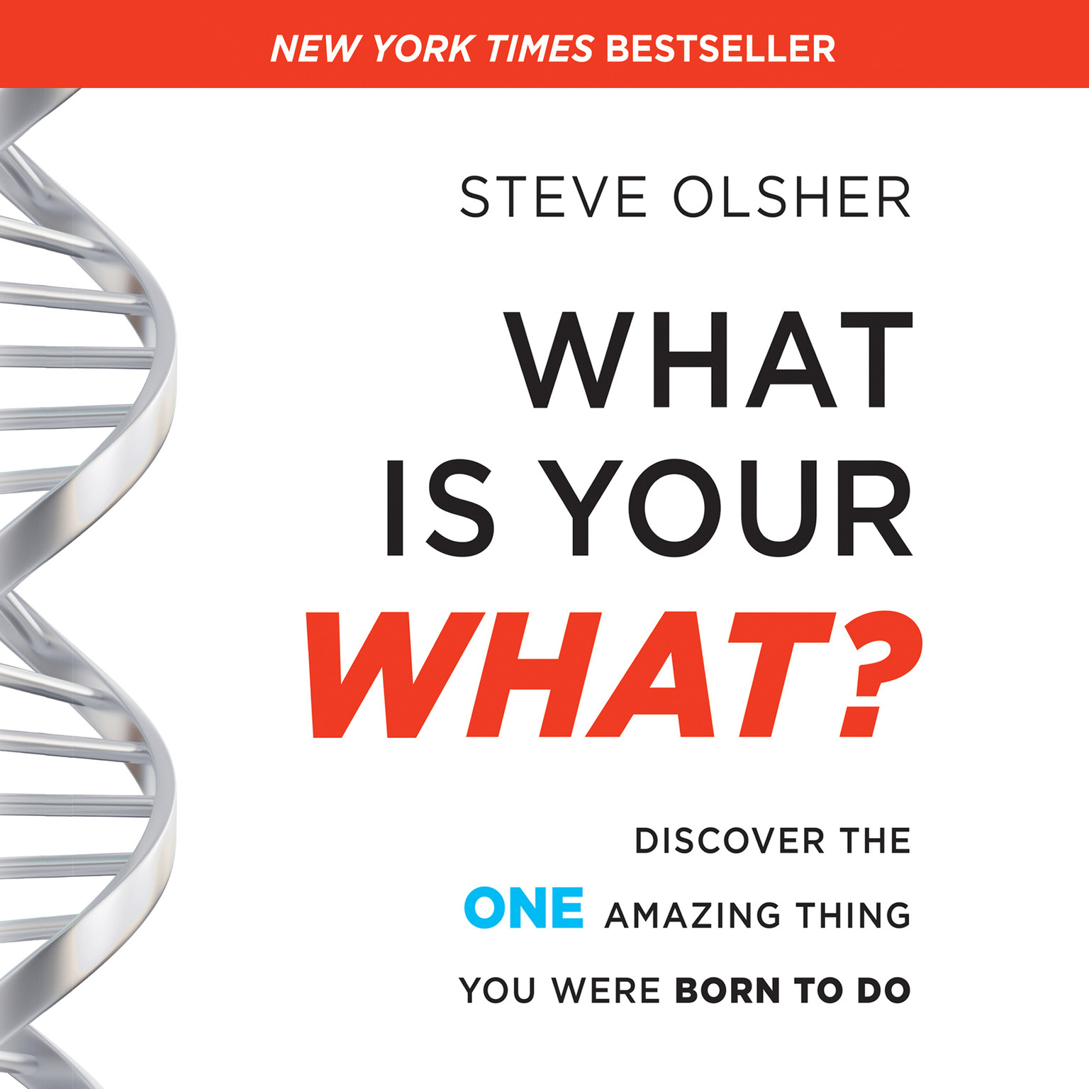 Printable What is Your WHAT?: Discover the One Amazing Thing You Were Born To Do Audiobook Cover Art