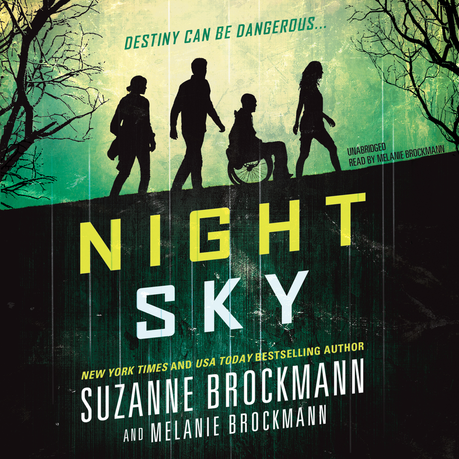 Printable Night Sky Audiobook Cover Art