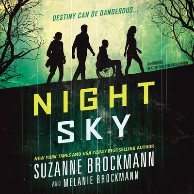 Night Sky Audiobook, by