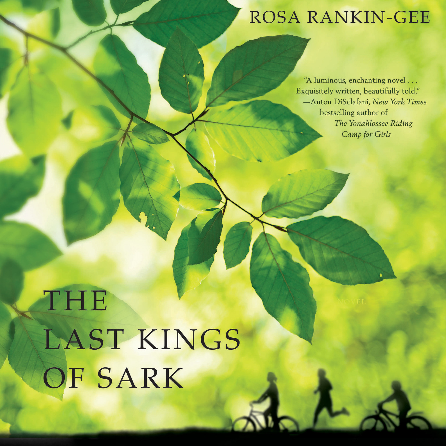 Printable The Last Kings of Sark: A Novel Audiobook Cover Art