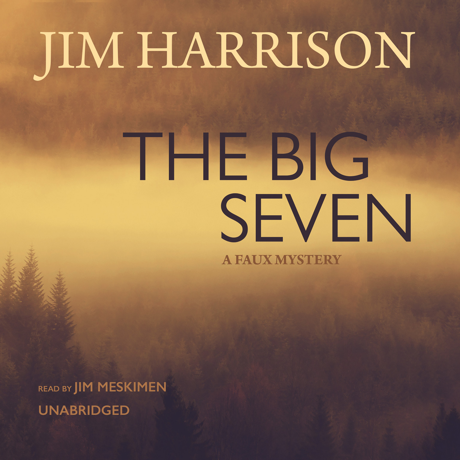 Printable The Big Seven: A Faux Mystery Audiobook Cover Art