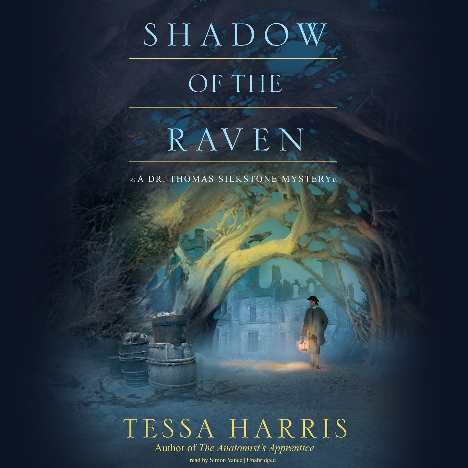 Printable Shadow of the Raven: A Dr. Thomas Silkstone Mystery Audiobook Cover Art