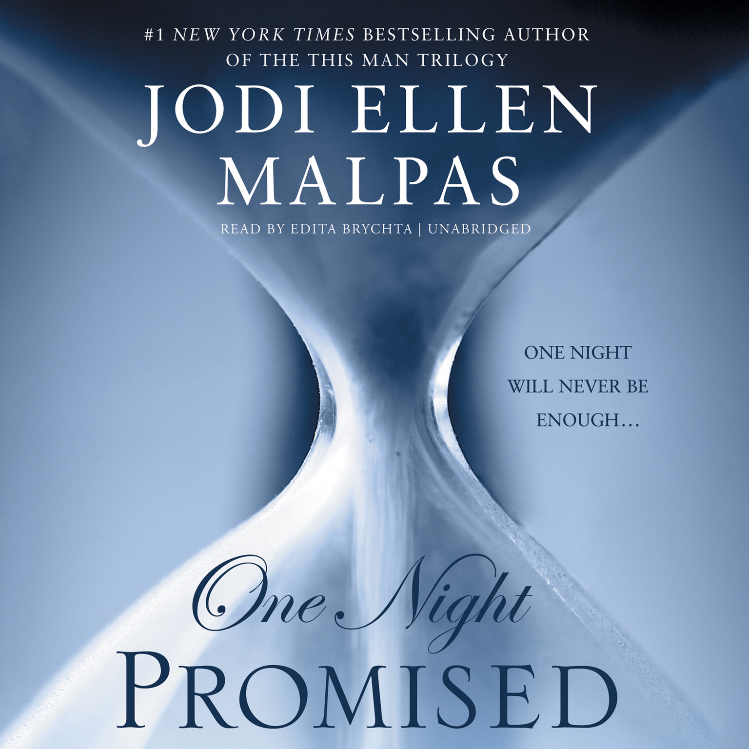 Printable One Night: Promised Audiobook Cover Art