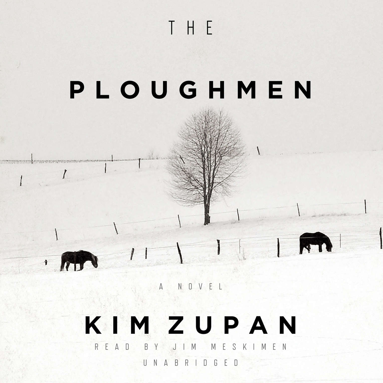 Printable The Ploughmen: A Novel Audiobook Cover Art