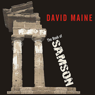 The Book of Samson Audiobook, by David Maine