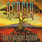 Acacia: The War with the Mein, by David Anthony Durham
