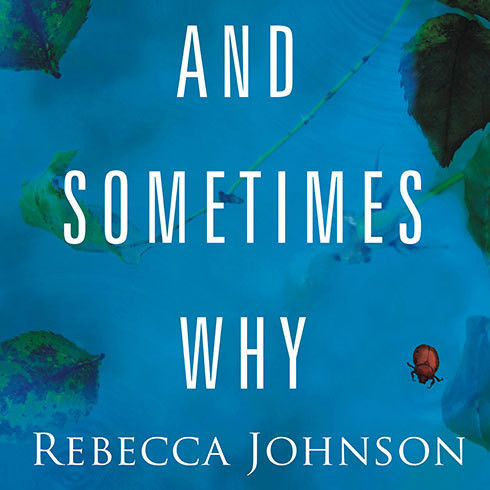 Printable And Sometimes Why: A Novel Audiobook Cover Art