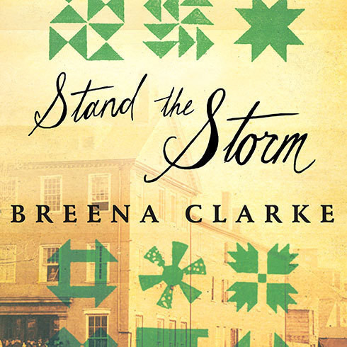 Printable Stand the Storm: A Novel Audiobook Cover Art