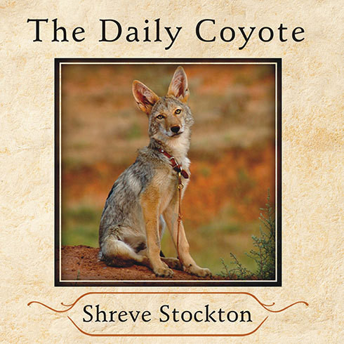 Printable The Daily Coyote: A Story of Love, Survival, and Trust in the Wilds of Wyoming Audiobook Cover Art