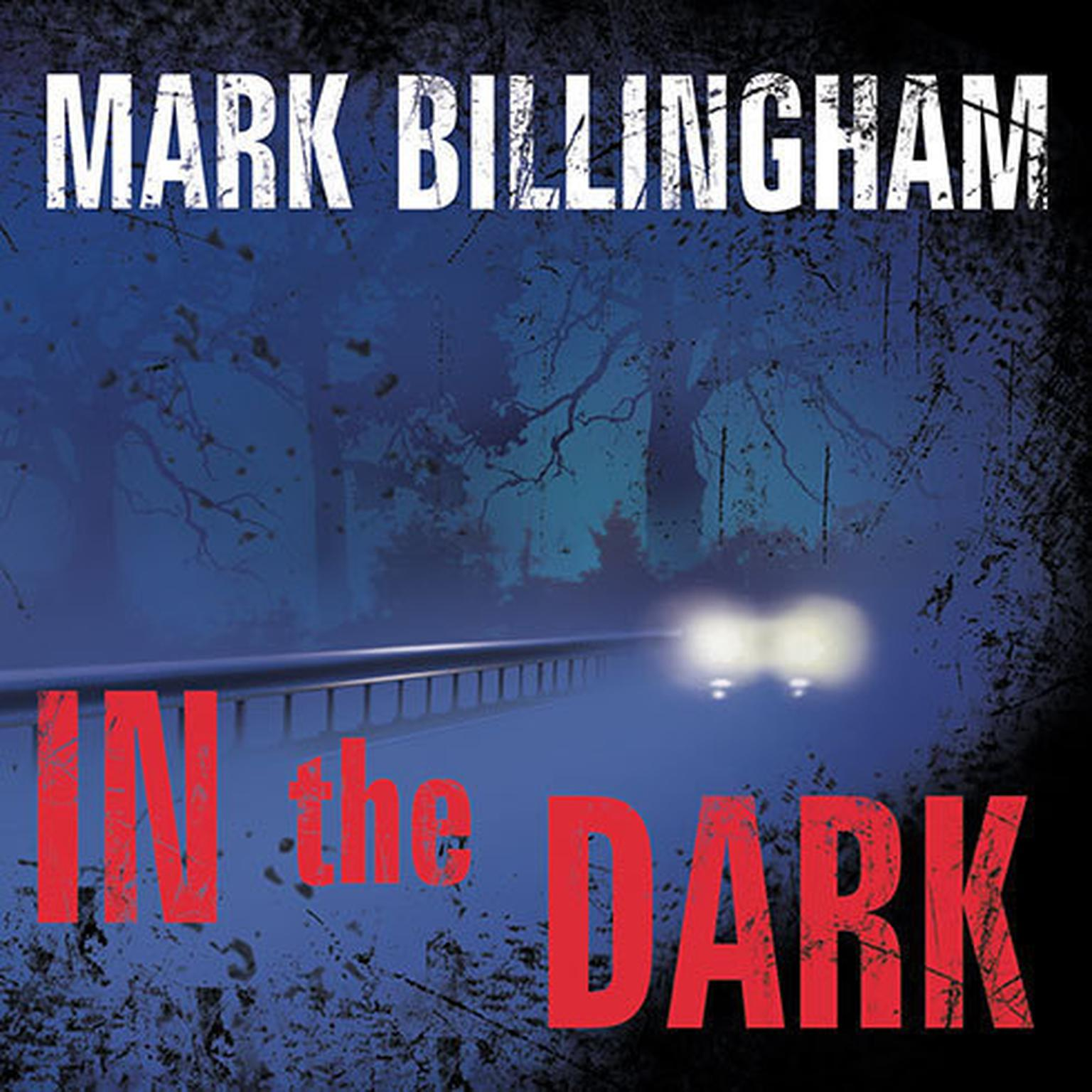 Printable In the Dark: A Novel Audiobook Cover Art