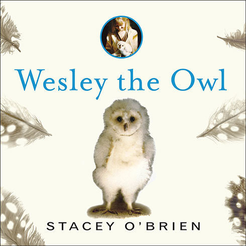 Printable Wesley the Owl: The Remarkable Love Story of an Owl and His Girl Audiobook Cover Art
