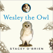 Wesley the Owl: The Remarkable Love Story of an Owl and His Girl Audiobook, by Stacey O'Brien