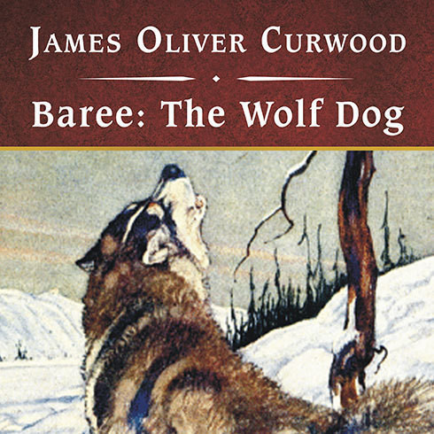 Printable Baree: The Wolf Dog Audiobook Cover Art