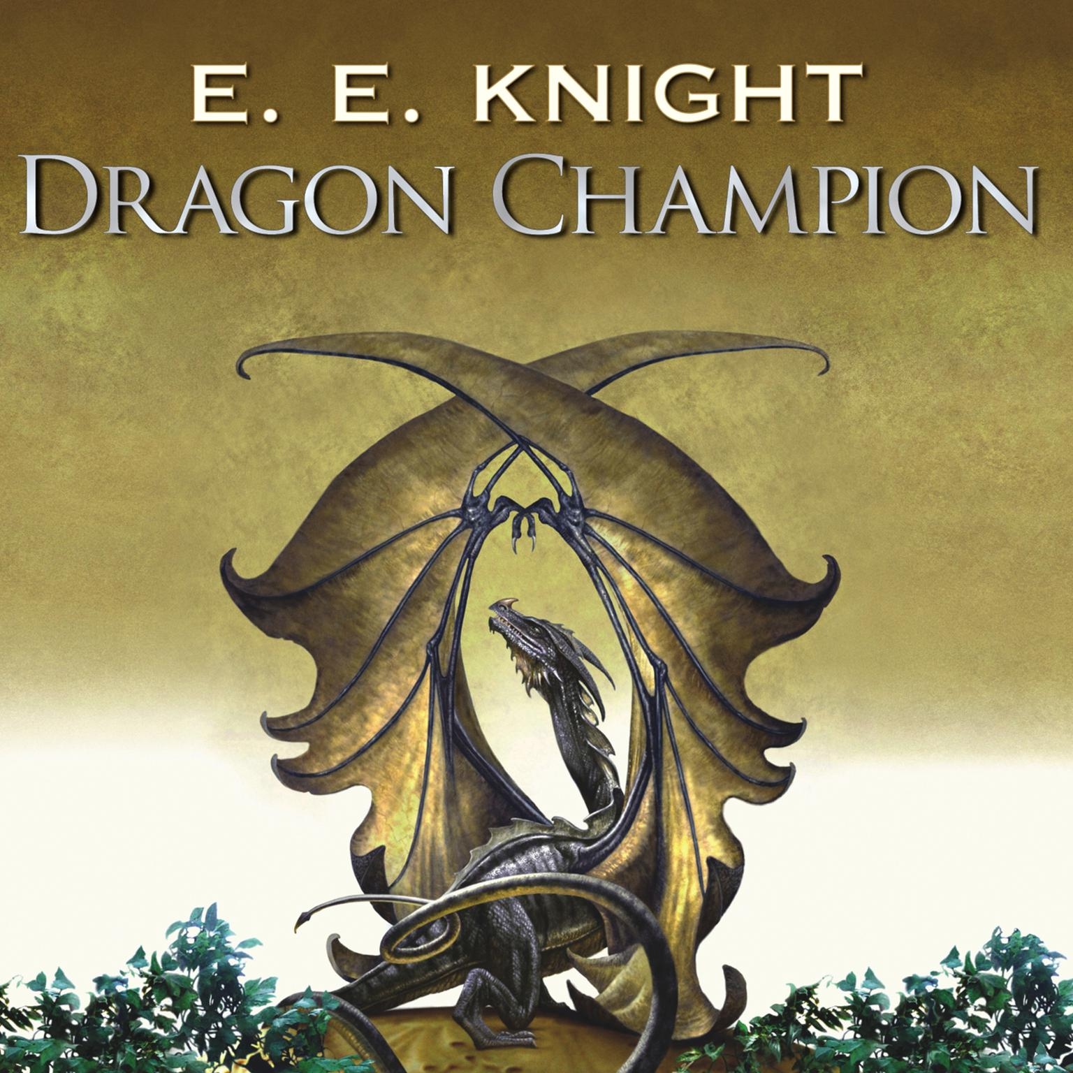 Printable Dragon Champion Audiobook Cover Art