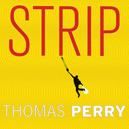 Printable Strip: A Novel Audiobook Cover Art