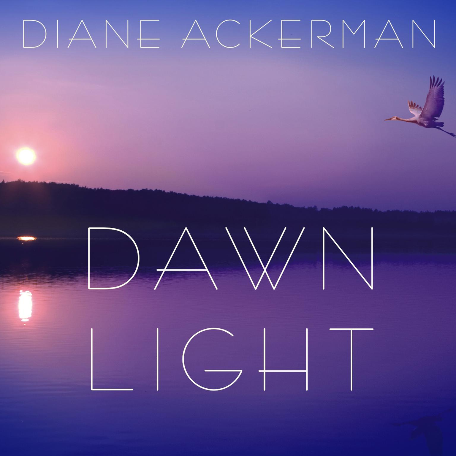 Printable Dawn Light: Dancing with Cranes and Other Ways to Start the Day Audiobook Cover Art