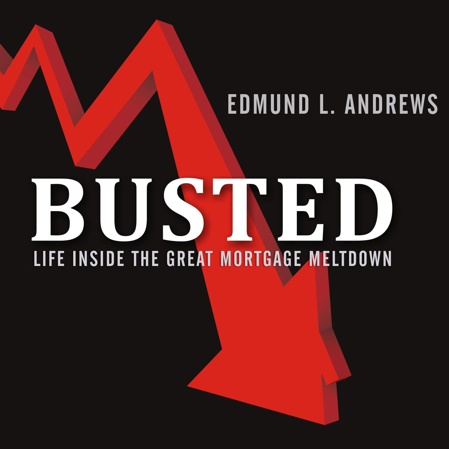 Printable Busted: Life Inside the Great Mortgage Meltdown Audiobook Cover Art