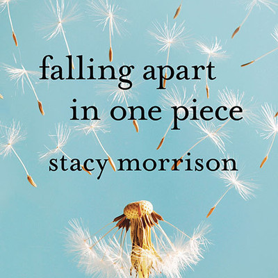 Falling Apart in One Piece: One Optimists Journey Through the Hell of Divorce Audiobook, by