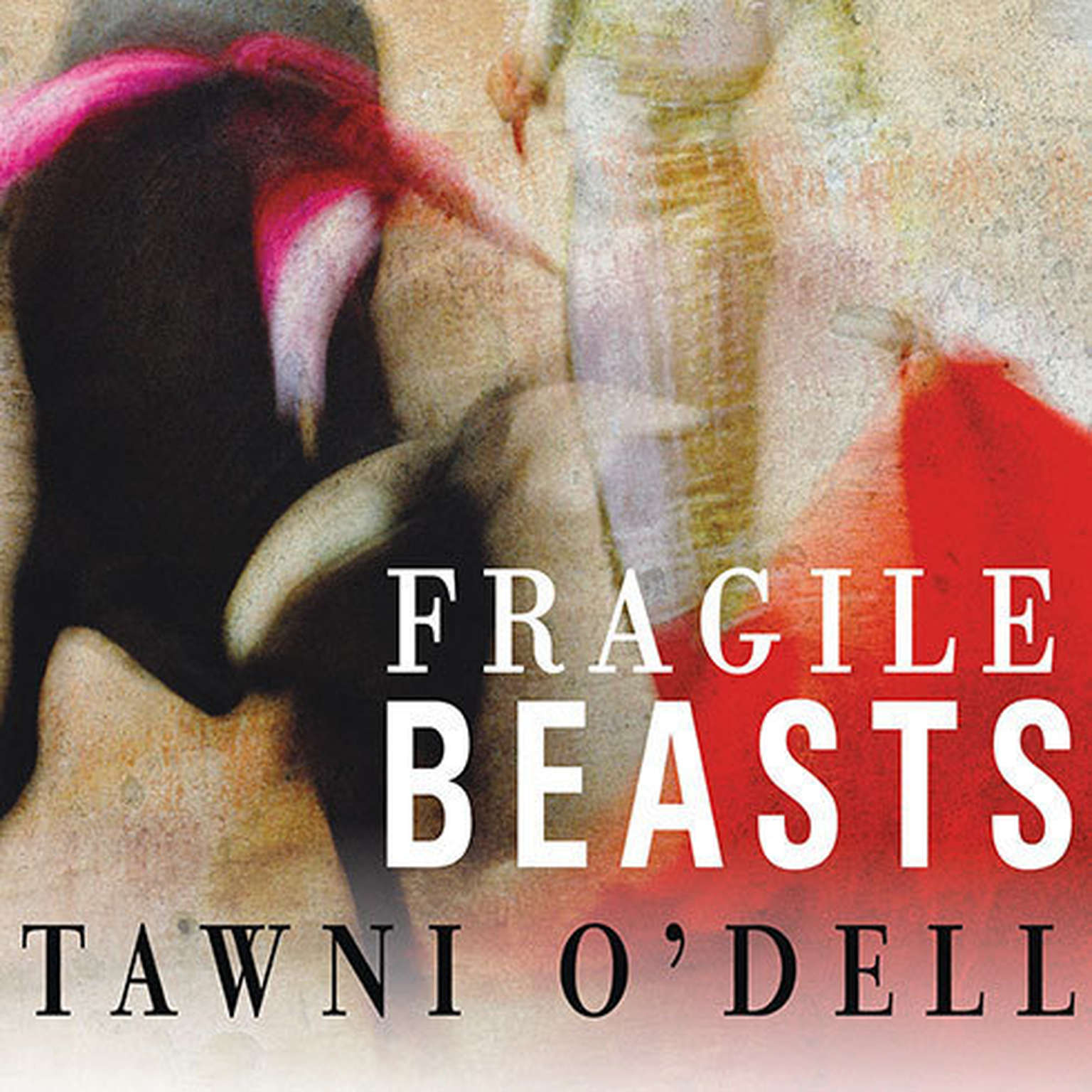 Printable Fragile Beasts: A Novel Audiobook Cover Art