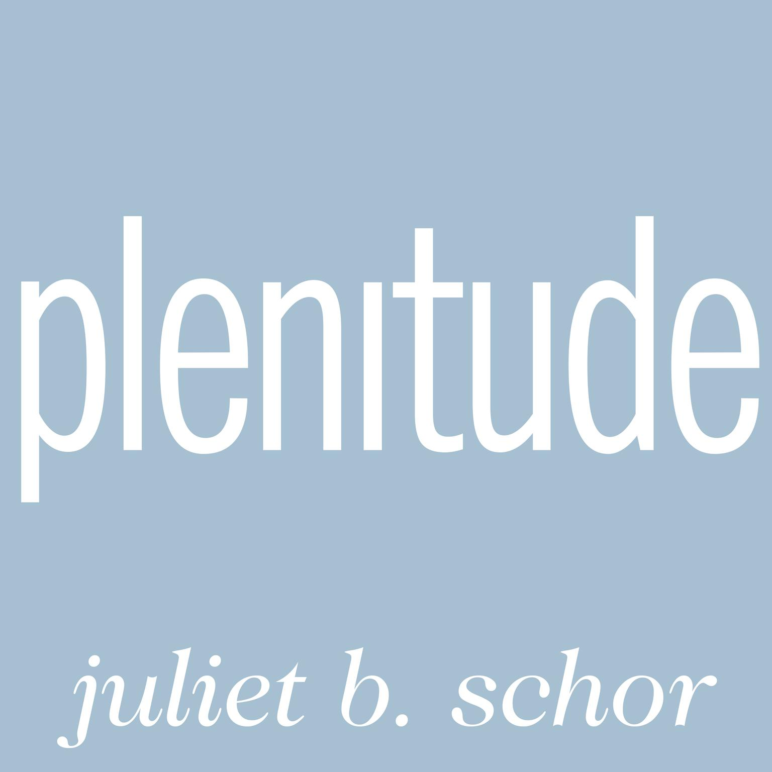 Printable Plenitude: The New Economics of True Wealth Audiobook Cover Art