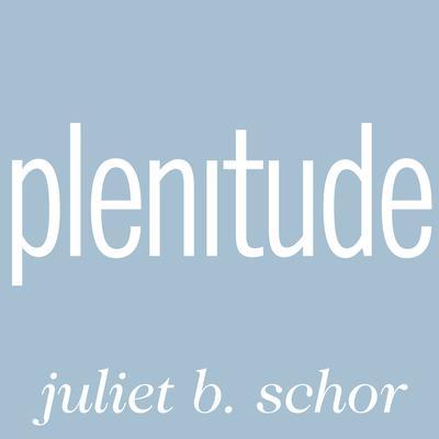 Plenitude: The New Economics of True Wealth Audiobook, by Juliet B. Schor
