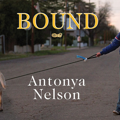Printable Bound: A Novel Audiobook Cover Art