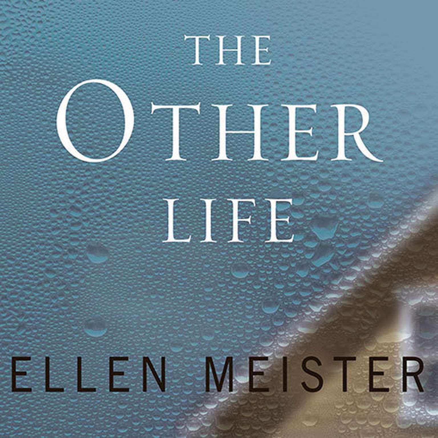 Printable The Other Life Audiobook Cover Art