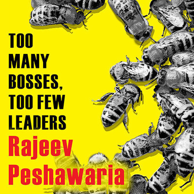 Too Many Bosses, Too Few Leaders: The Three Essential Principles You Need to Become an Extraordinary Leader Audiobook, by Rajeev Peshawaria