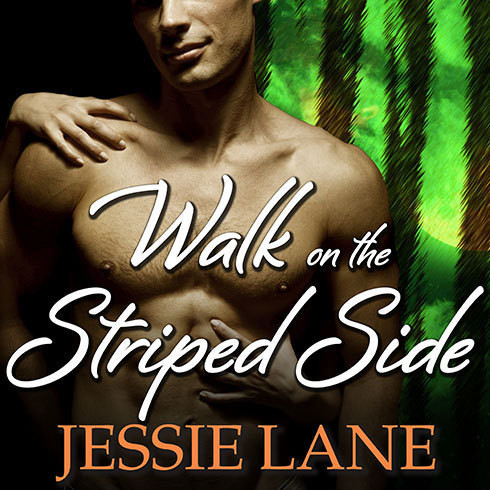Printable Walk on the Striped Side Audiobook Cover Art