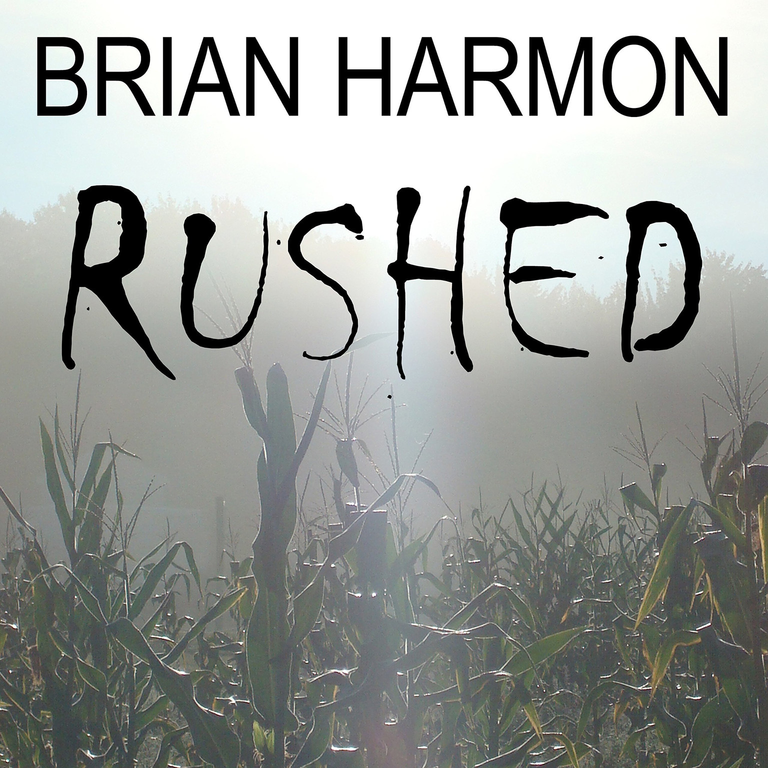 Printable Rushed: The Unseen Audiobook Cover Art